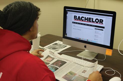 Bachelor Online - Levi