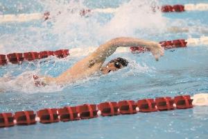 Swimming Whitaker - C_M